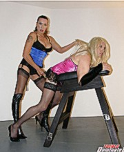 A display of horny crossdresser and tgirls sharing the fun and excitement of getting sucked and fucked